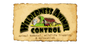 sponsor: wilderness animal control